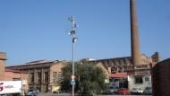 Canbatllo