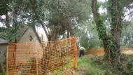 Jardins Dipòsit Rei Martí