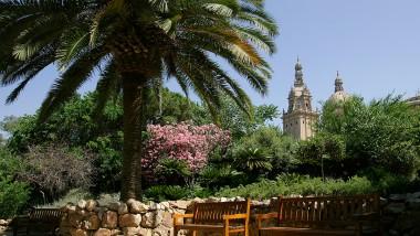 El parc de Montjuïc