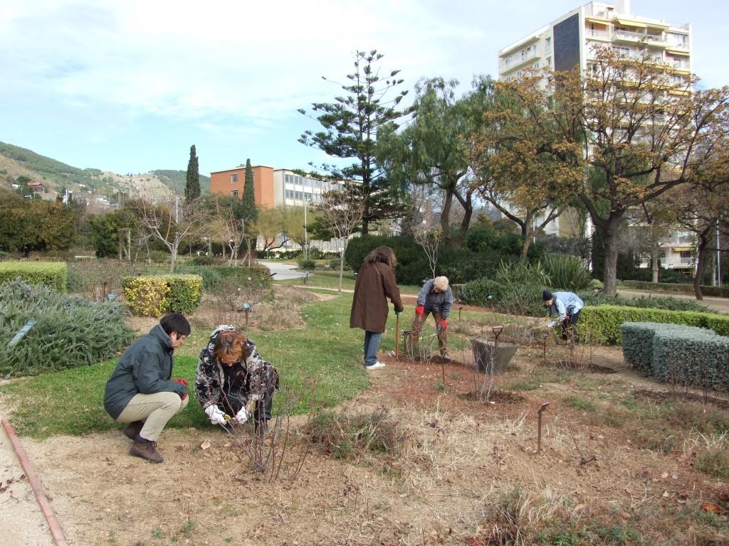 Disponible el programa de cursos de jardiner a del centro for Escuelas de jardineria en barcelona