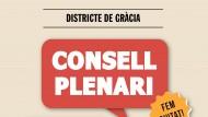 Cartell Consell Plenari Gràcia