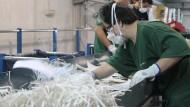 empresa, ocupació, gestió de residus, integració, discapacitat, treball, màquina, destructora, centre especial de treball