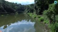 L'alliberament de tortugues domèstiques malmet l'ecosistema del pantà de Vallvidrera
