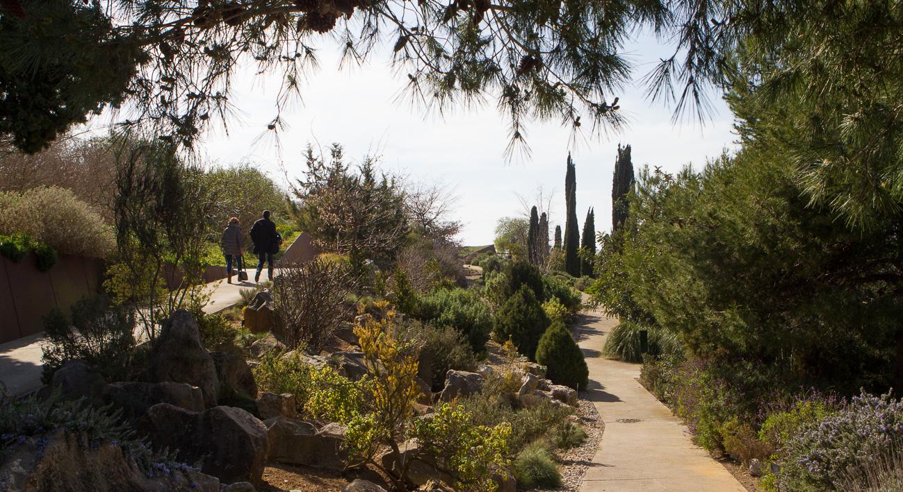 Jard botanic barcelona website for Barcelona jardin