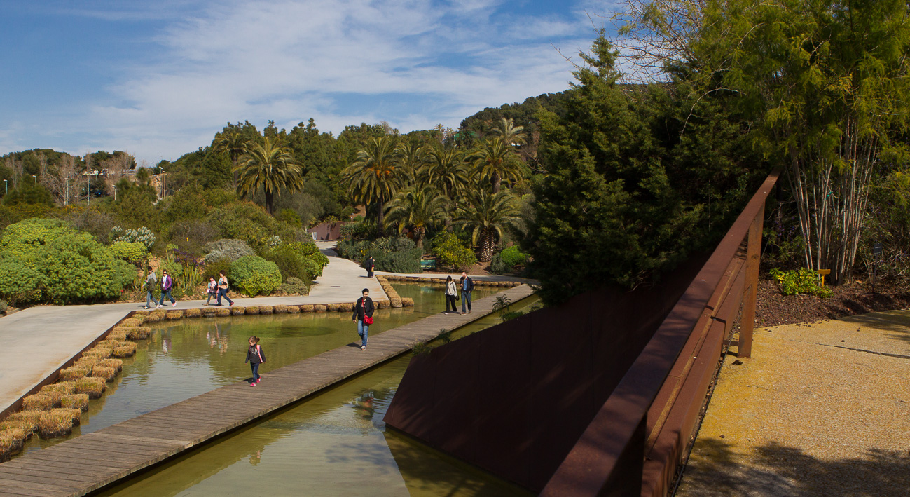 Jard botanic barcelona website for Barcelona jardin botanico