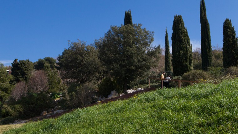 Jardí Botànic - Març 2015