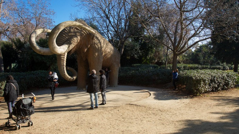 Parc de la Ciutadella - Gener 2015