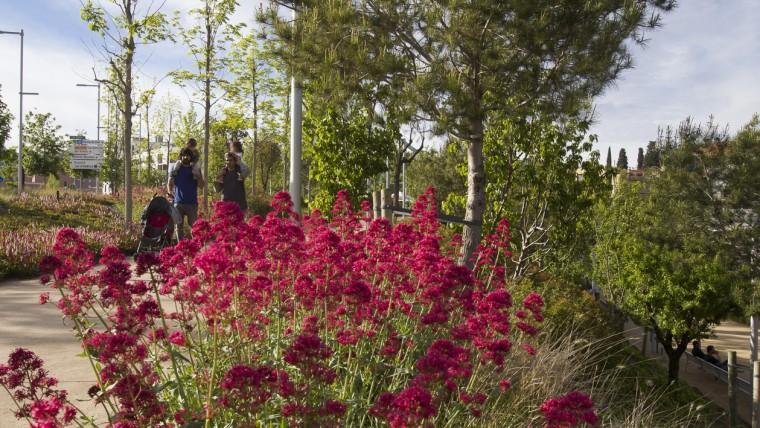 Parc de les Rieres d'Horta - Maig 2015