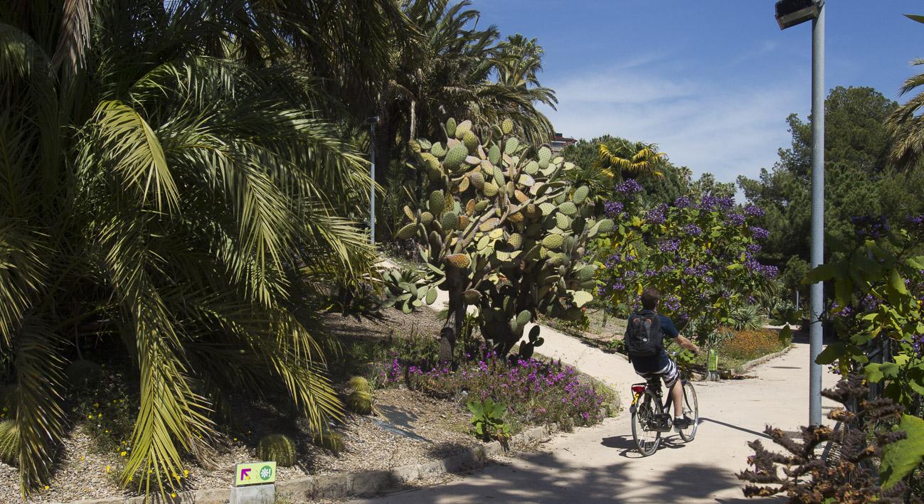 Jardines de moss n costa i llobera web de barcelona - Jardines de montjuic ...
