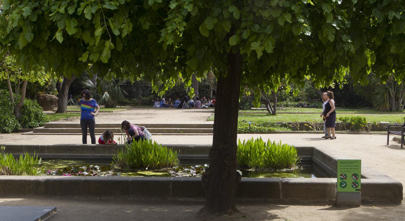 Jard n de aclimataci n de montju c la meva barcelona for Barcelona jardin