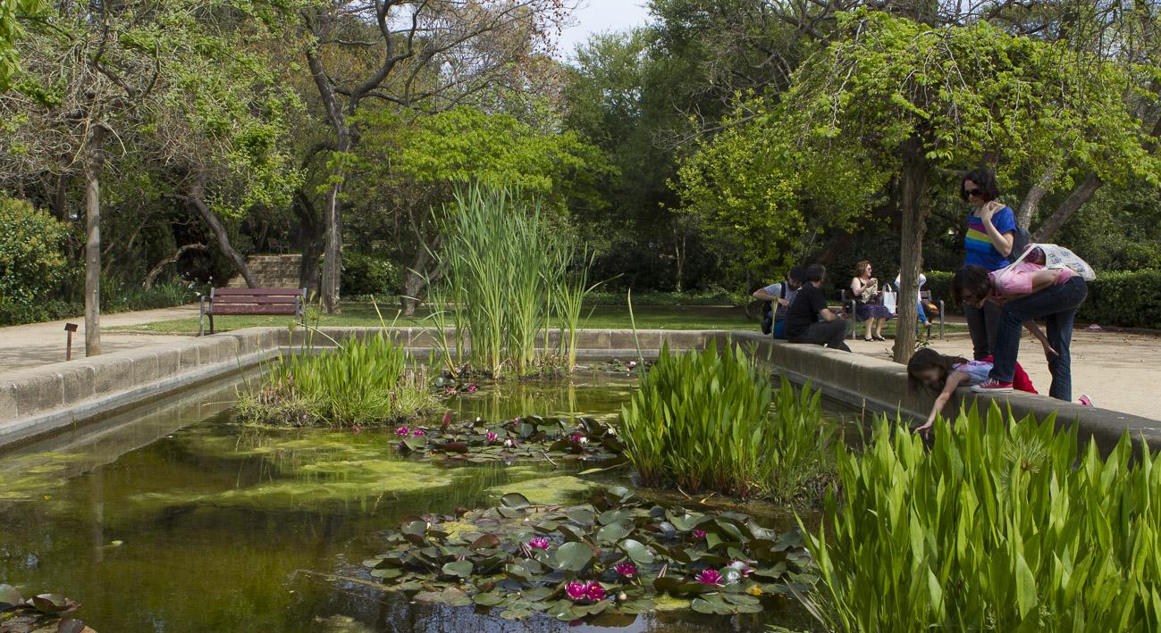 Jard n de aclimataci n de montju c la meva barcelona for Jardin botanico montjuic