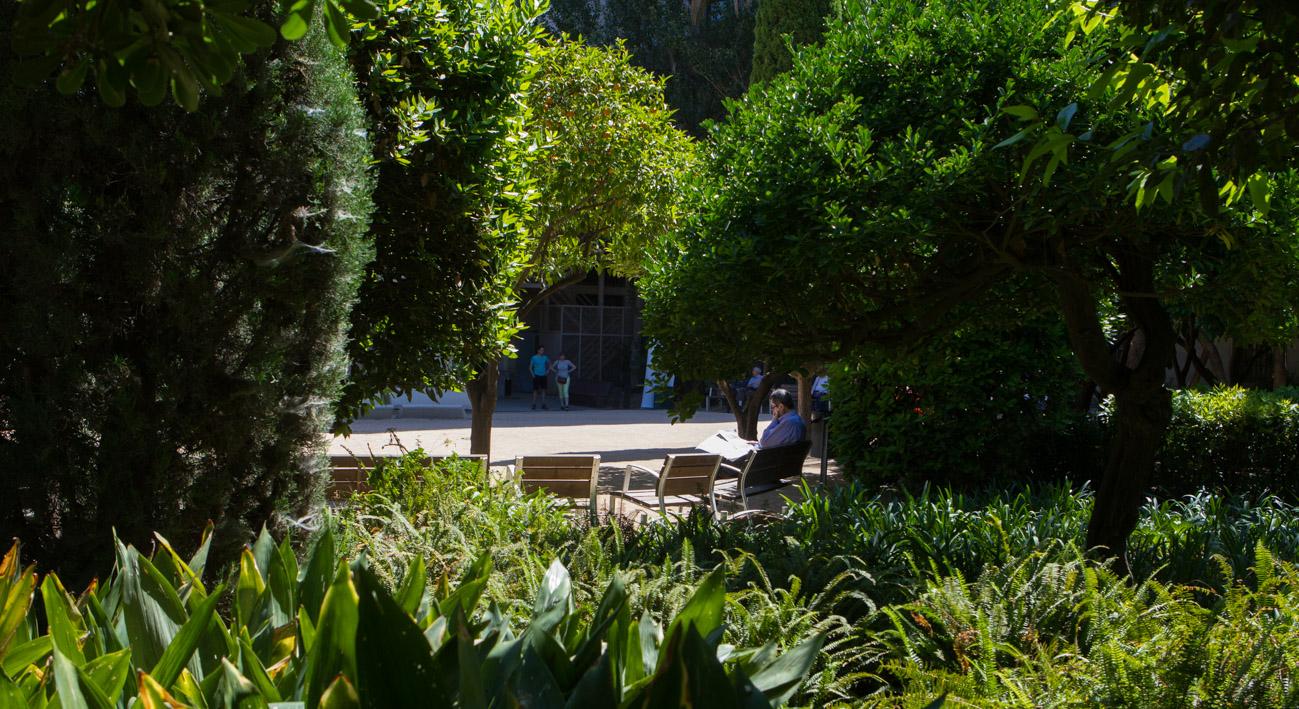 Jardins del palau robert la meva barcelona - Jardins del palau ...