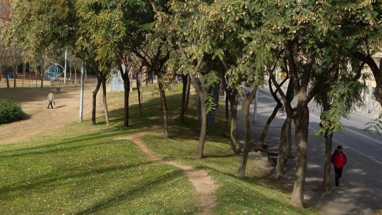 Jardins de Joan Vinyoli - Gener 2015