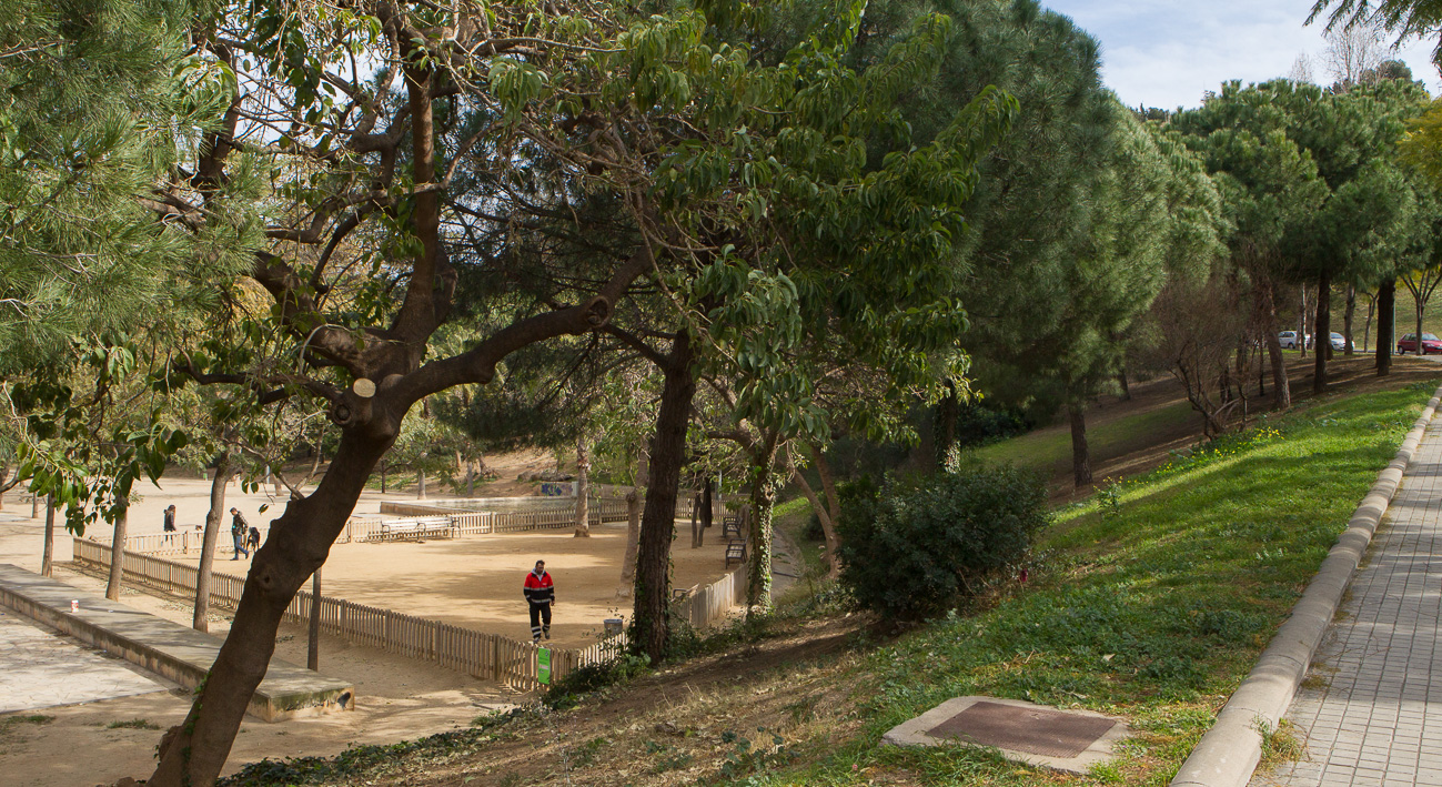 Parc de la font florida guia bcn agenda d 39 activitats - Jardineria la font ...