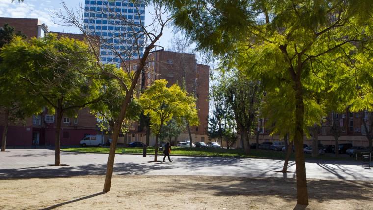 Jardins de l'Arboreda - Febrer 2015