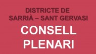 Consell_plenari