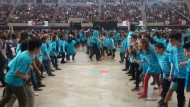 dansa ara 2016