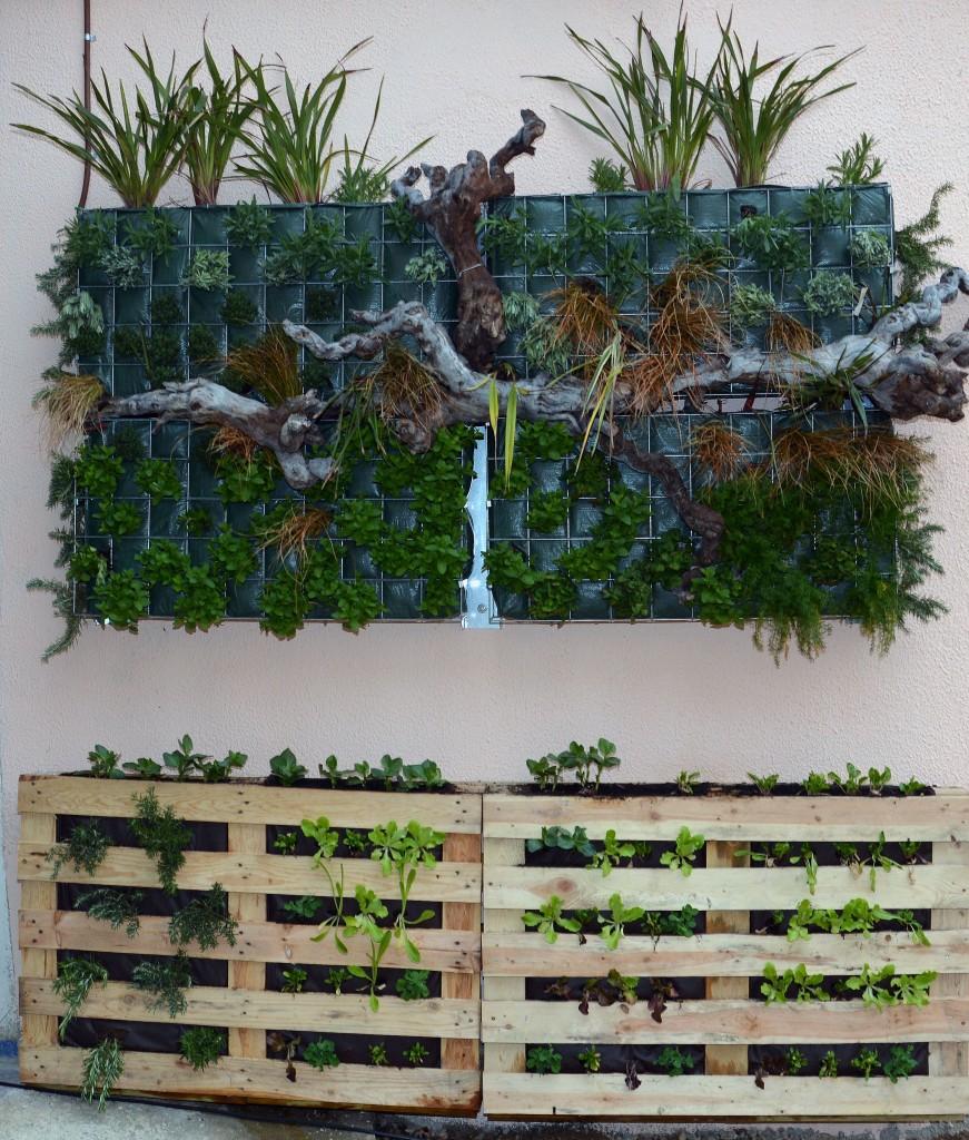 Tres escoles estrenen horts urbans verticals ecologia for Escoles de disseny d interiors a barcelona