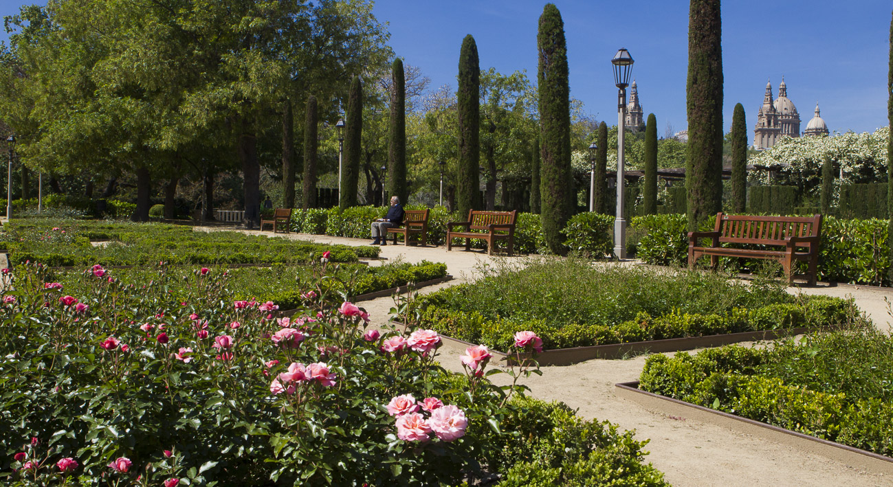 Jardins del teatre grec barcelona website for Paisajismo barcelona