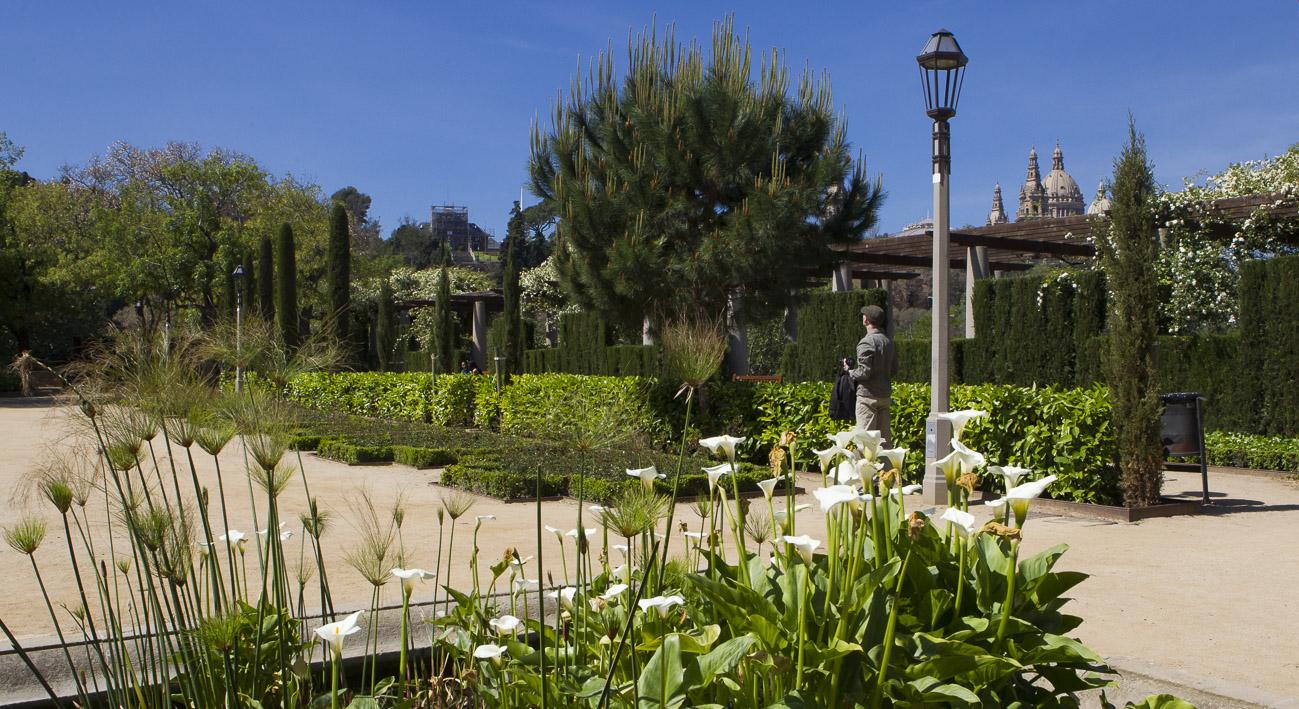 Jardins del teatre grec barcelona website for Barcelona jardin