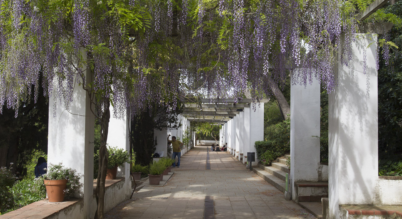 Jardines de laribal web de barcelona for Barcelona jardin
