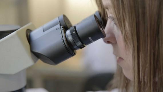 Campanya Imparables. Fundació Josep Carreras. Setmana de la Leucèmia. Laboratori. Microscopi. Ciència. Recerca.