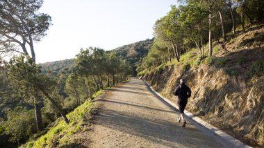 La carretera de les Aigües (sector Horta-Guinardó)
