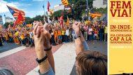 Via Catalana. 11 de setembre de 2013. Fotografia: Consuelo Bautista.
