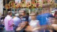Decoració del projecte Flors a La Rambla a la parada de flors número 7 del passeig.