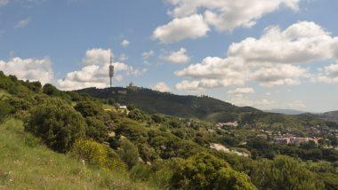 collserola, paisatge, verd, Barcelona
