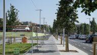 tanca d'obres, obres, carrer, Sant Martí, remodelació