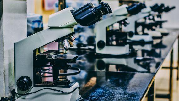 Microscopis