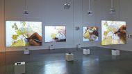 Barcelona Gallery Weekend, cap de setmana, Barcelona, agenda