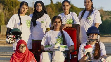 pressupostos participatius, cricket