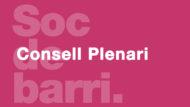 Banner-Consell-Plenari