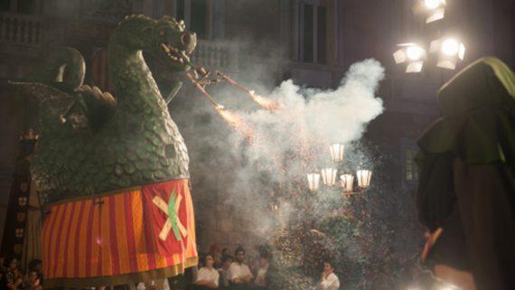 1- Reconeixes el drac?