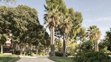 parc Guineueta