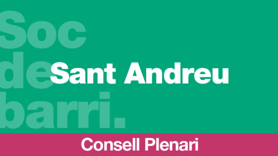 Consell plenari TW