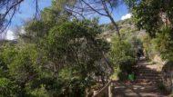 Tancament del Parc de la Font del Racó