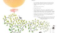 """Página interior del libro """"Mil tomates y una rana""""."""