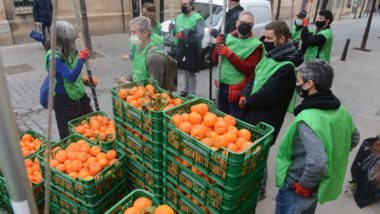 taronges, Sant Andreu, caixes de taronja, melmelada