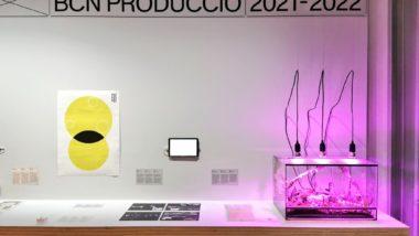 BCN producció, Barcelona Producció 2021-2022, art contemporani, exposició