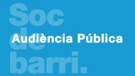 Audiència Pública
