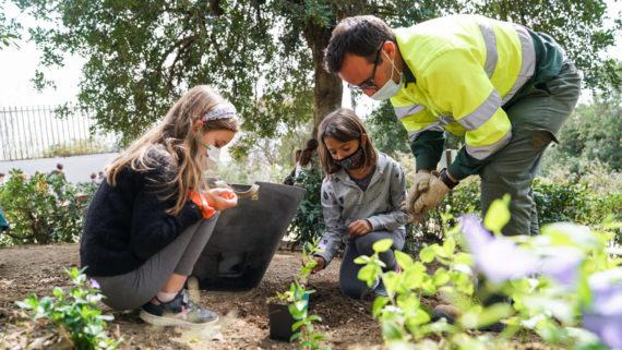 plantada escoles parcs i jardins