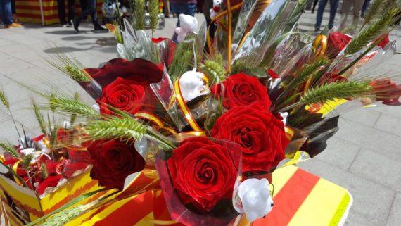 Sant Jordi rambla poblenou