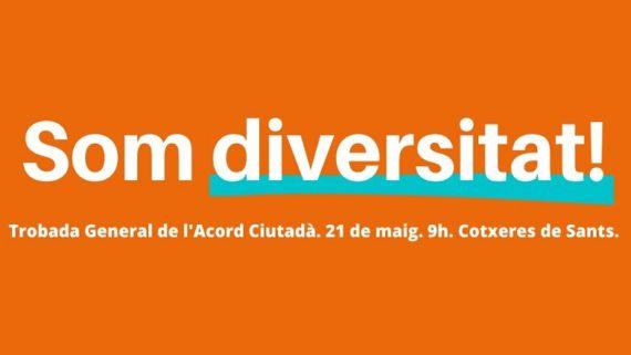Acord ciutadà som diversitat1