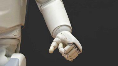 intel·ligència artificial, robòtica, Bienna Ciutat i Ciència