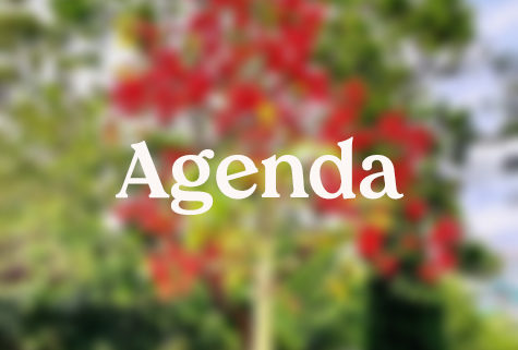 Foto agenda paraula