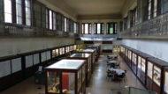 Museu Martorell - Pla Barcelona Ciència