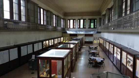 Museu Martorell